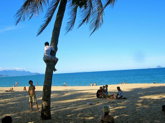 Boy climbing tree in Nha Trang, Vietnam