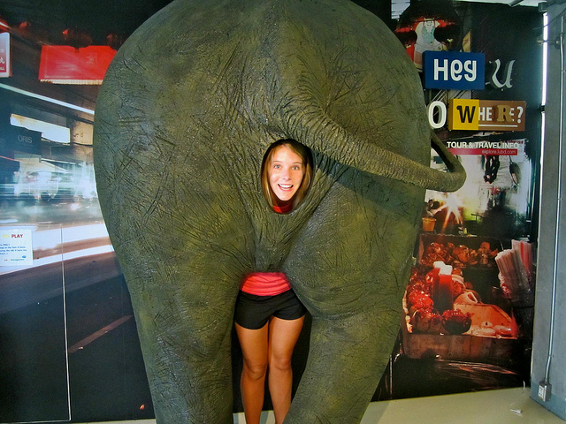 Elephant Bum and Caroline