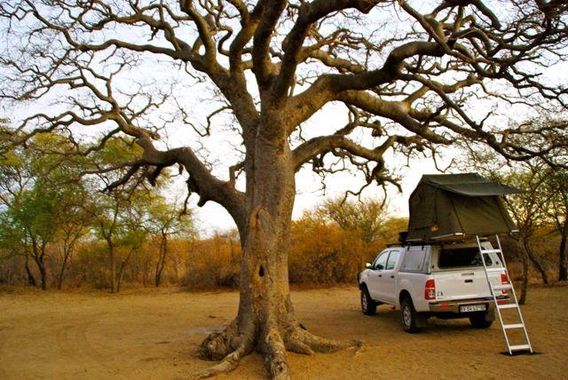 Camping at Khama Rhino Sanctuary