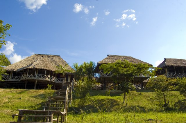 amazonia expeditions lodge