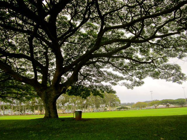Mililani park