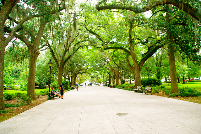 Savannah, Georgia park
