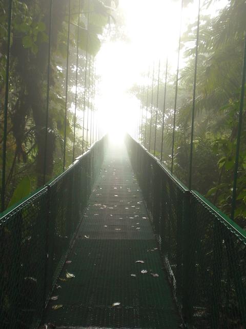 Costa Rica - Monteverde 093