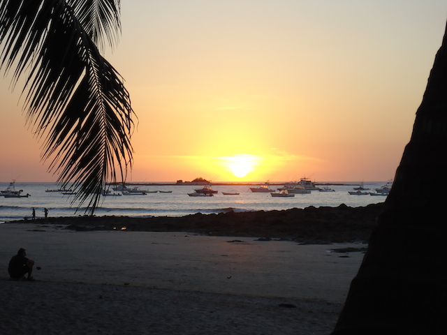 Costa Rica Tamarindo 116